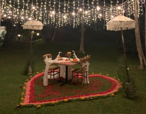Jungle Romantic Dinner