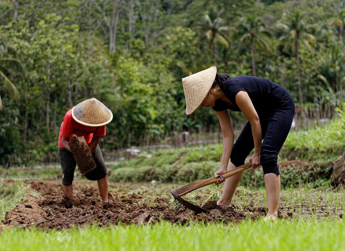 Farmers Of The Day