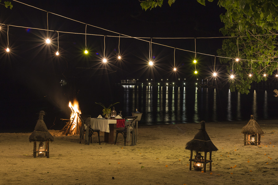 Bonfire Dinner On The Beach
