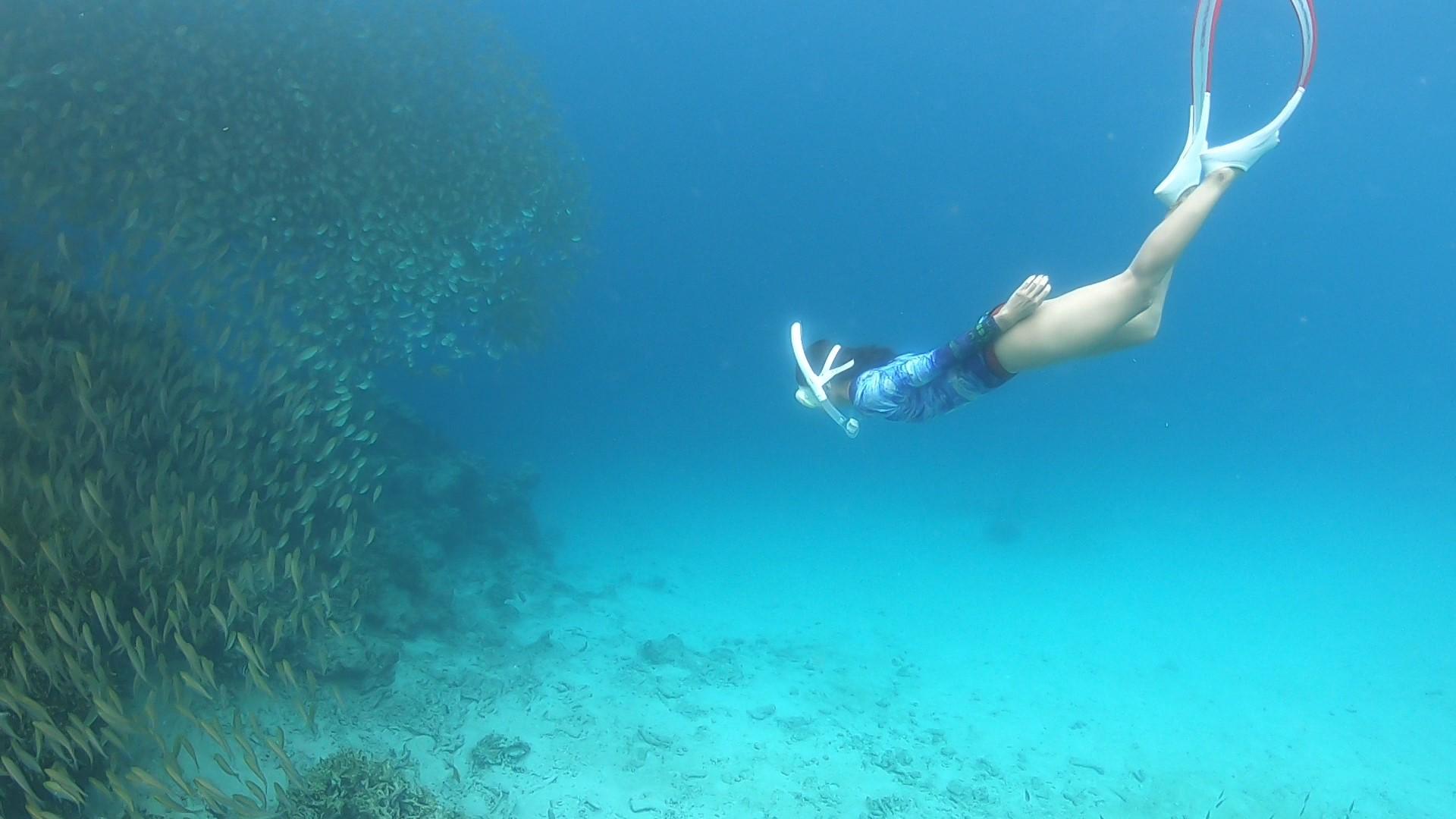 Bidadari Island Snorkeling